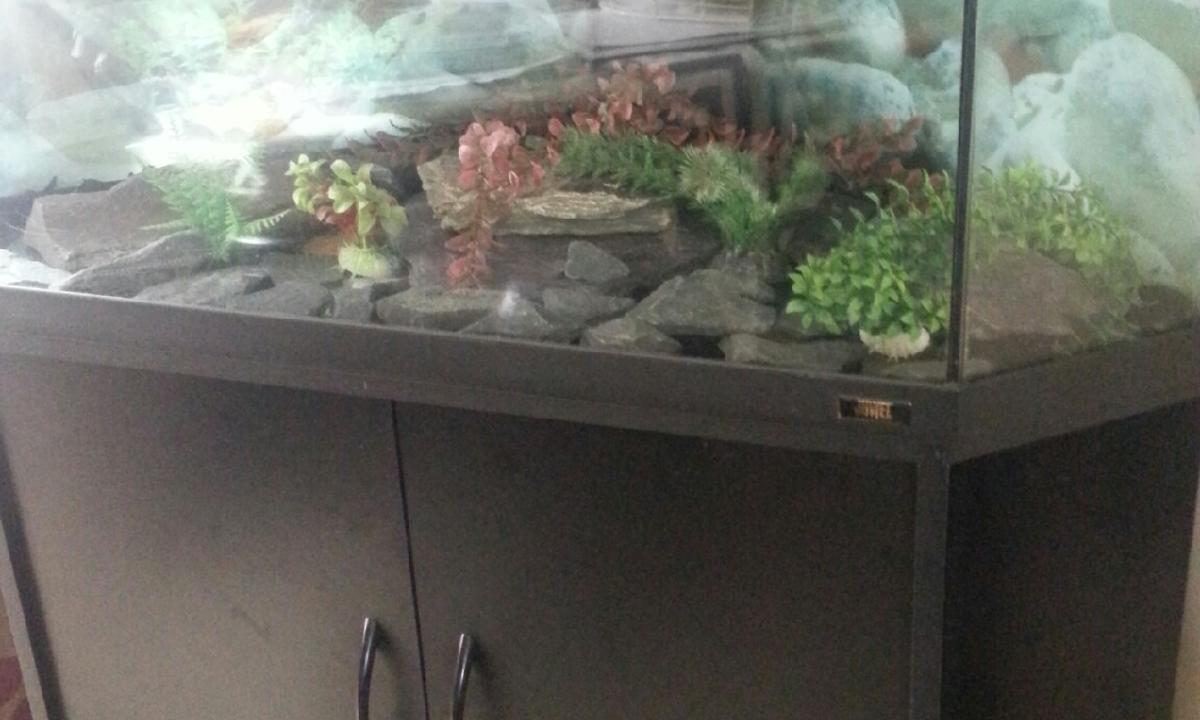 Used fish tank with cabinet in ha4 london for for Fish tank stinks