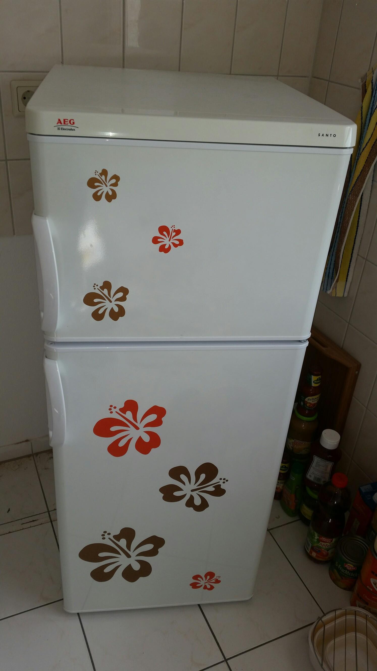 Aeg Electrolux Santo Kühlschrank : Gebraucht kühlschrank aeg santo ct kühl gefrierschr in
